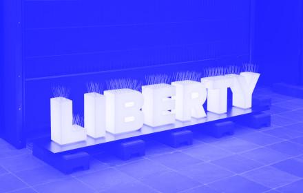 Sejla Kameric_Liberty_Belvedere Wien_2018_StudioViolet_blue